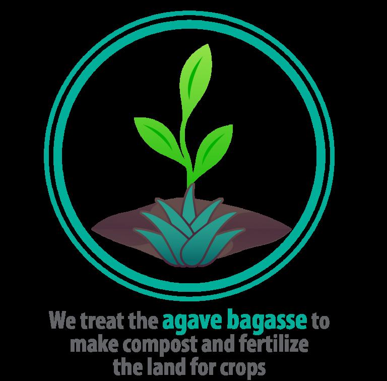 IMAGENES P-NEW WEB NATUREL_AGAVE BAGASSE